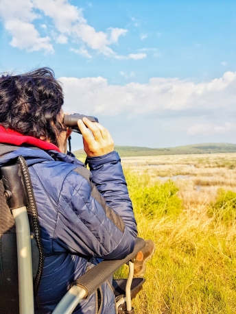 birdwatching in Sebrana Nature reserve