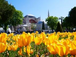 Hagia Sophia vor voller Blütenpracht.