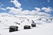 Sommerhütten im Schnee auf dem Goderdzipass