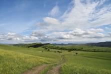 einfach nur schön der Vashlovani Nationalpark