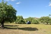 Stellplatz im Vashlovani Nationalpark
