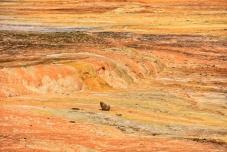 Gesteinsabfärbungen im Truso Valley