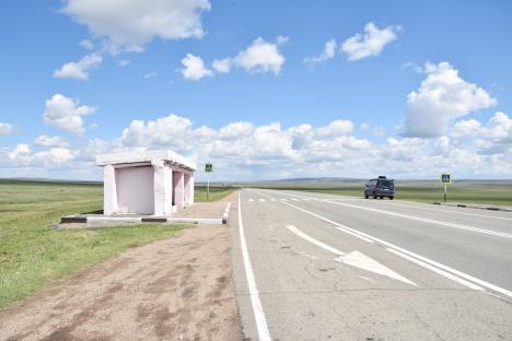 Rosa Bushäuschen am Sibirischen Highway