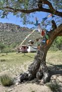 Kloster Erdiin Khambiin Khiid
