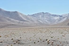 entlang des Highways verläuft der chinesischer Grenzzaun, wobei viele Holzpfosten als Baumatarial missbraucht werden
