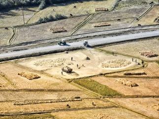 jede Fläche wird für Getreide genutzt