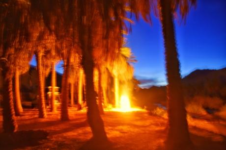 Lagerfeuer im Palmenhain
