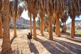 Entspannen im Palmencanyon