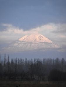 der berühmte Ararat